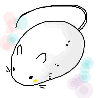 ネズミの画像 p1_4