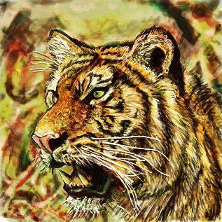トラとは (トラとは) [単語記事 ...
