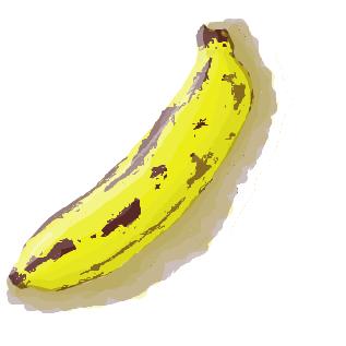バナナ 名前 由来