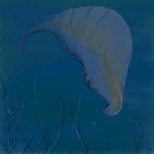 ユンナノズーン ユンナノズーン 海綿動物  カンブリアモンスターとは