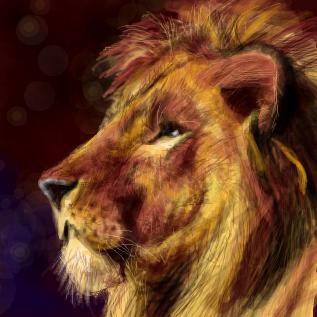 ライオンの画像 p1_14