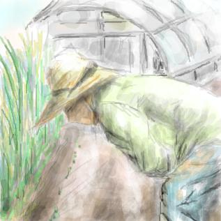 農家の朝は早い