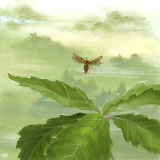 風の中のマリア