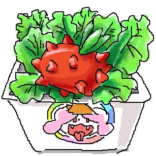 マ(トマ)サラダ