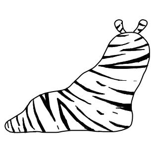 サバンナシマシマオオナメクジ