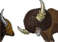 新旧闘牛対決