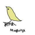鳥(モグラ)