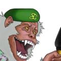 ソルジャー(猿) 四つ腕サル