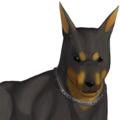 魔犬ベロ。オズマに非ず。