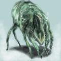 虫について語るスレ >>36